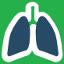 figura de um pulm�o